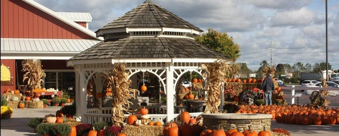 fall-fest-yard_orig